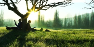 ağaç altında kitap okumak